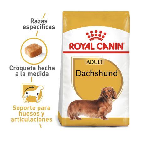 3182550717335-1-comida-para-perros-royal-canin