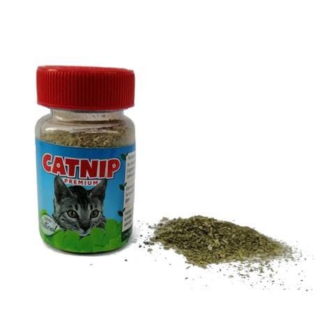 CAT-NIP-PREMIUN--