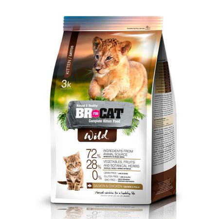 BR4CATS-CAT-WILD-GATITOS