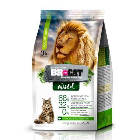 BR4CATS-CAT-WILD-GATO-ADULTO