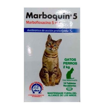 MARBOQUIN-5-MG-GATOS