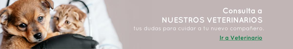 Banner Veterinarios
