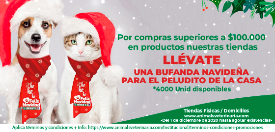 Bufandas Navideñas - Mobile