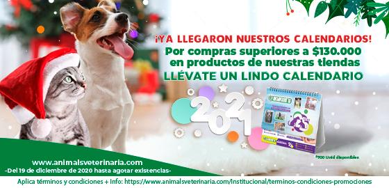 Calendarios- Mobile
