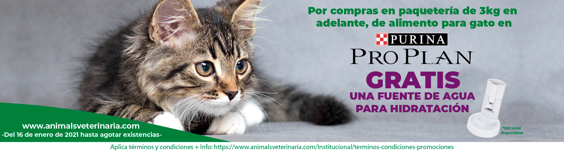Alimento para gatos PURINA - Promo fuente