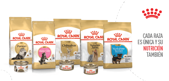 Royal Canin - Mobile