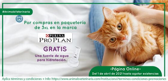 Comida para gatos PROPLAN  - Promocion Fuente de agua - Mobile