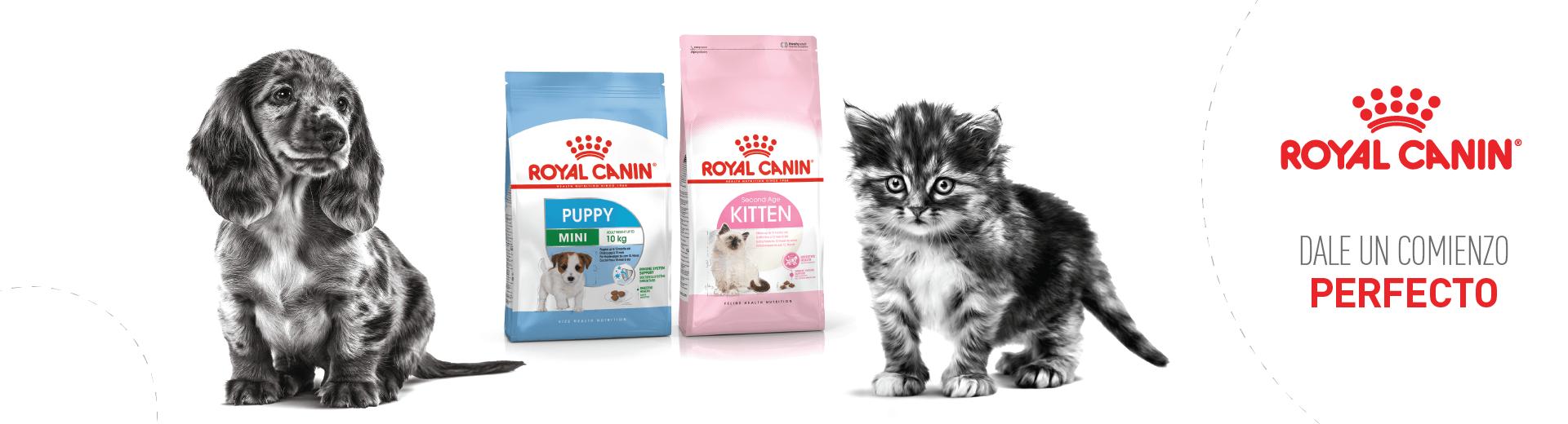 Alimento para mascotas ROYAL CANIN - Concentrado