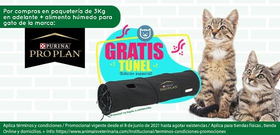 Tunel Proplan - Colección 221 - Mobile