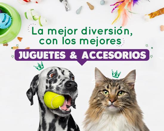 Banner Juguetes y Accesorios