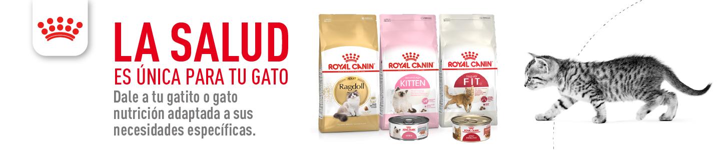 La salud es única para tu gato - Royal Canin