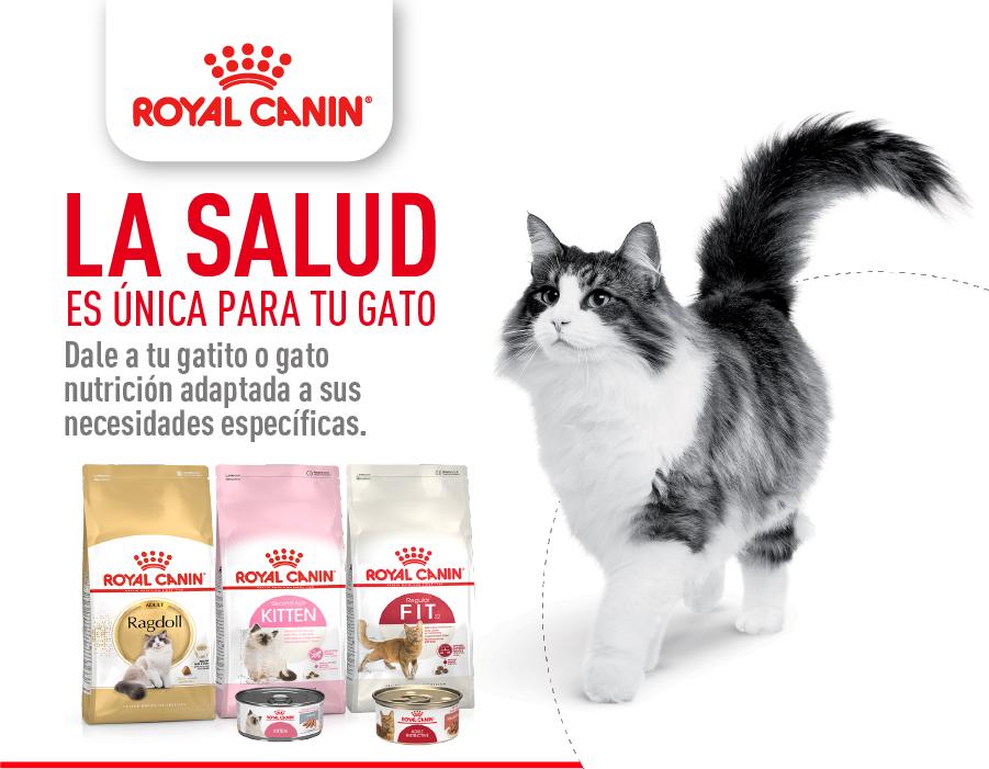 La salud es única para tu gato - Royal Canin Mobile