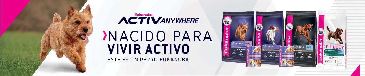Nacido para vivir activo Eukanuba - Desktop