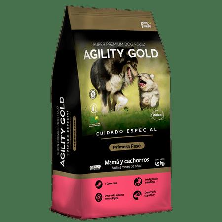 AGILITY-GOLD-PRIMERA-FASE